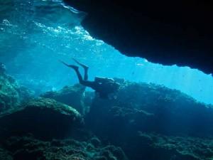 Diving-Ustica