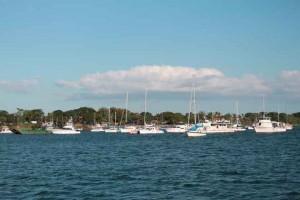 Balboa-Yacht-Club-660