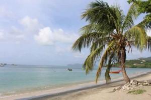 Beach-660