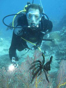 divinginsnowtorme1024