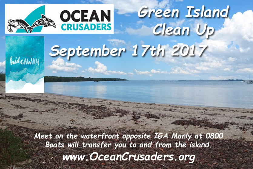 Green Island Clean Up Flyer